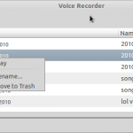 Voice Recorder_001