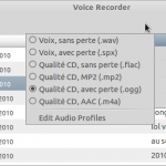 Voice Recorder_007